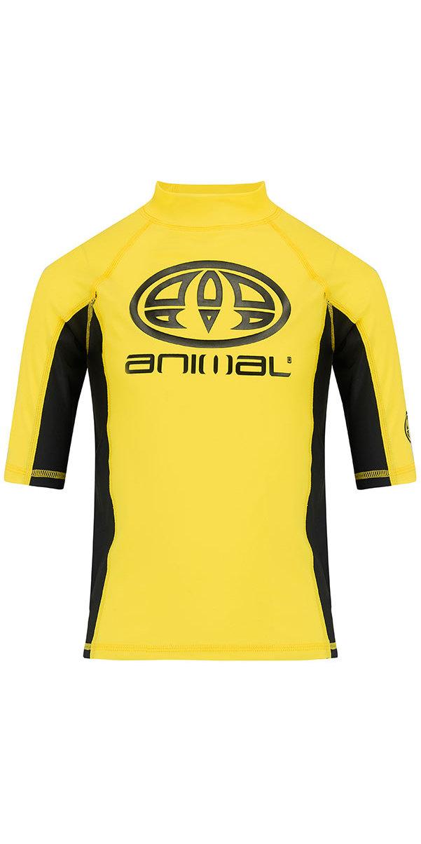 2018 Animal Junior Boys Hiltern Short Sleeve Rash Vest Bright Yellow CL8SN610