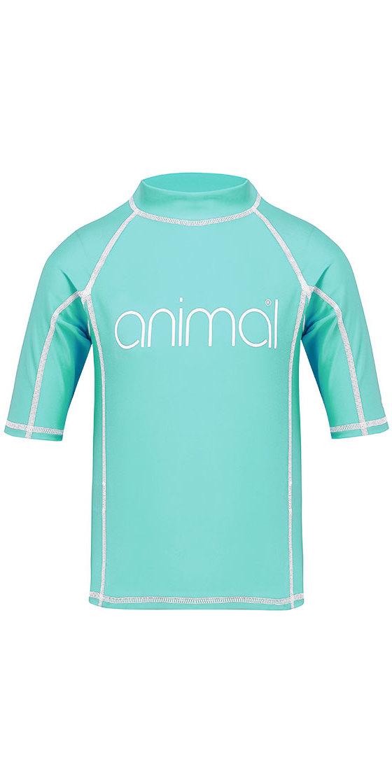 2018 Animal Junior Girls Molli Short Sleeve Rash Vest Peppermint Blue CL8SN815
