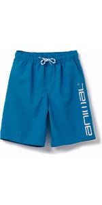 2020 Animal Junior Boys Tannar Boardshorts CL0SS600 - Mediterranean Blue