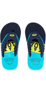 2018 Animal Jekyl Slice Junior Boys Flip Flops Bluebird Blue FM8SN601