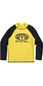 2019 Animal Junior Boys Fontaine Long Sleeve Rash Vest Bright Yellow CL8SN612