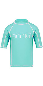 2018 Animal Junior Girls Molli Short Sleeve Rash Vest Peppermint Blue CL8SN815