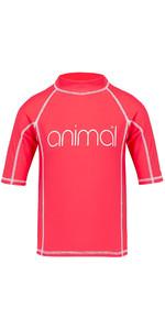 Animal Junior Girls Molli Short Sleeve Rash Vest Petunia Pink CL8SN815