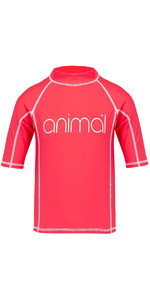 2018 Animal Junior Girls Molli Short Sleeve Rash Vest Petunia Pink CL8SN815
