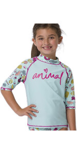 2020 Animal Junior Girls Paddle Rash Suit Set CL0SS814 - Misty Green