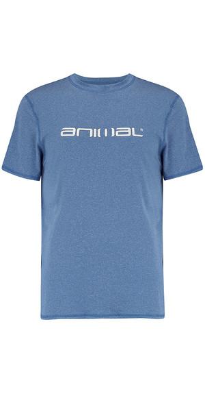 2018 Animal Latero Short Sleeve UV Protection Tee Snorkel Blue CL8SN022