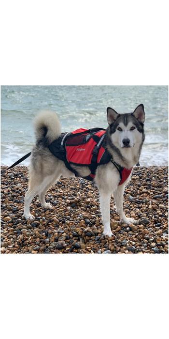 2021 Crewsaver Pet Dog / Cat Lifejacket Float 2370